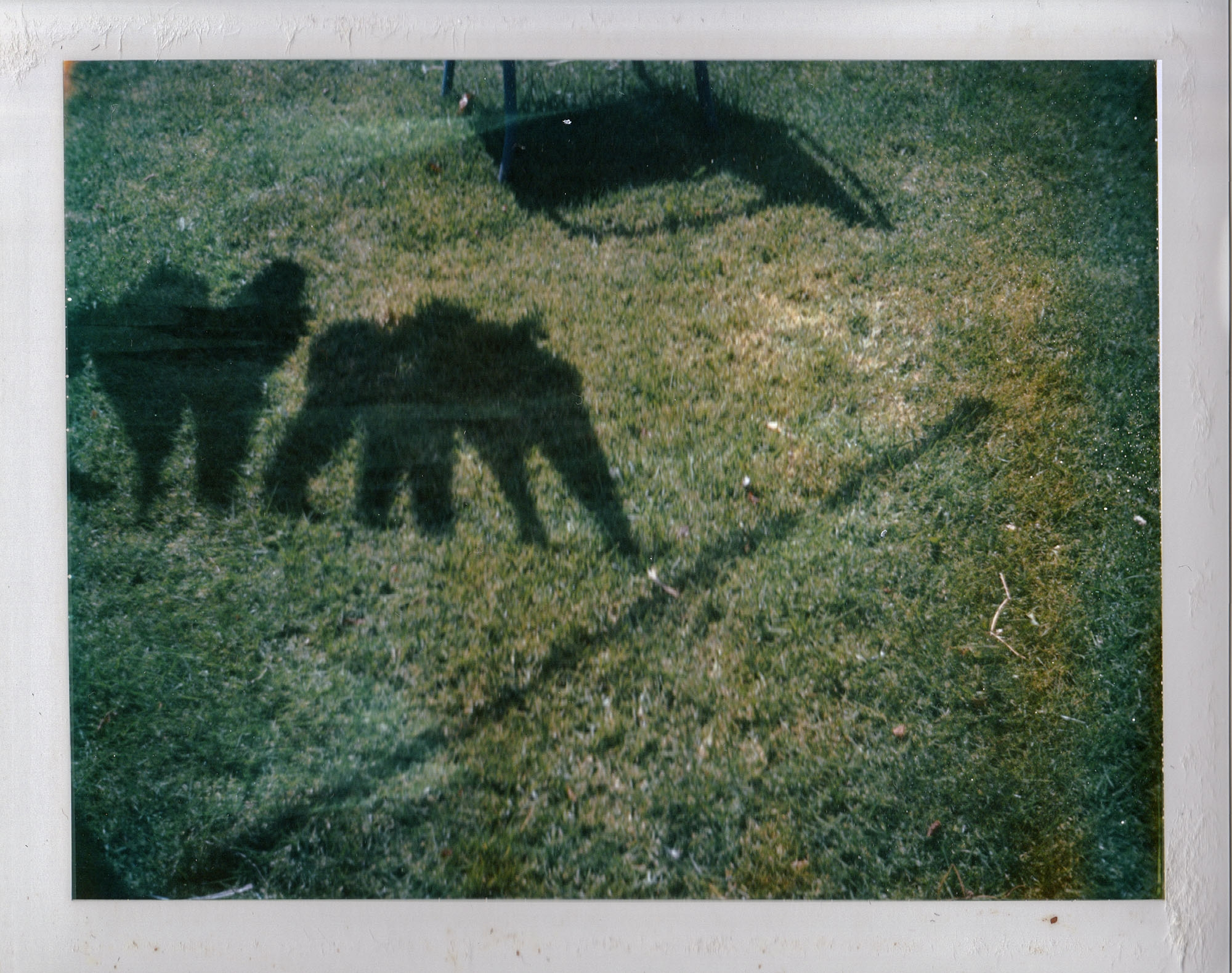 shadow [Polaroids 2000s - s2art | ello