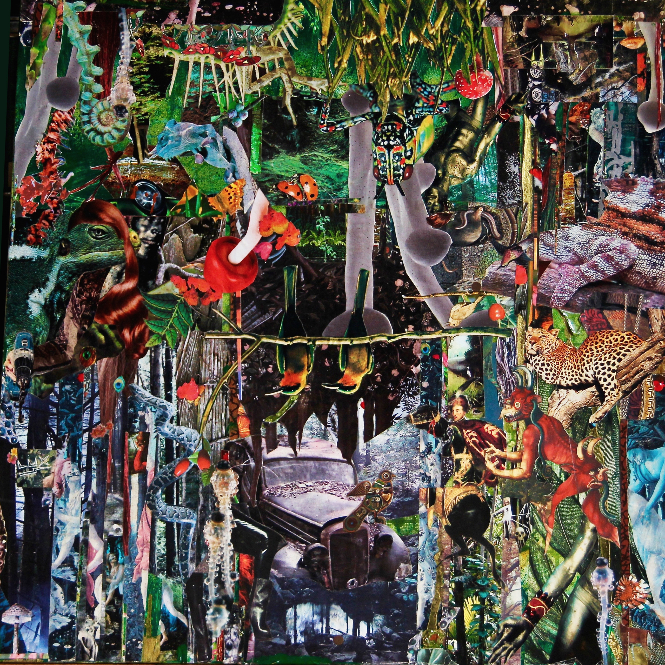 forest 2017 (60x60) pj pANcMA - collage - pancma | ello