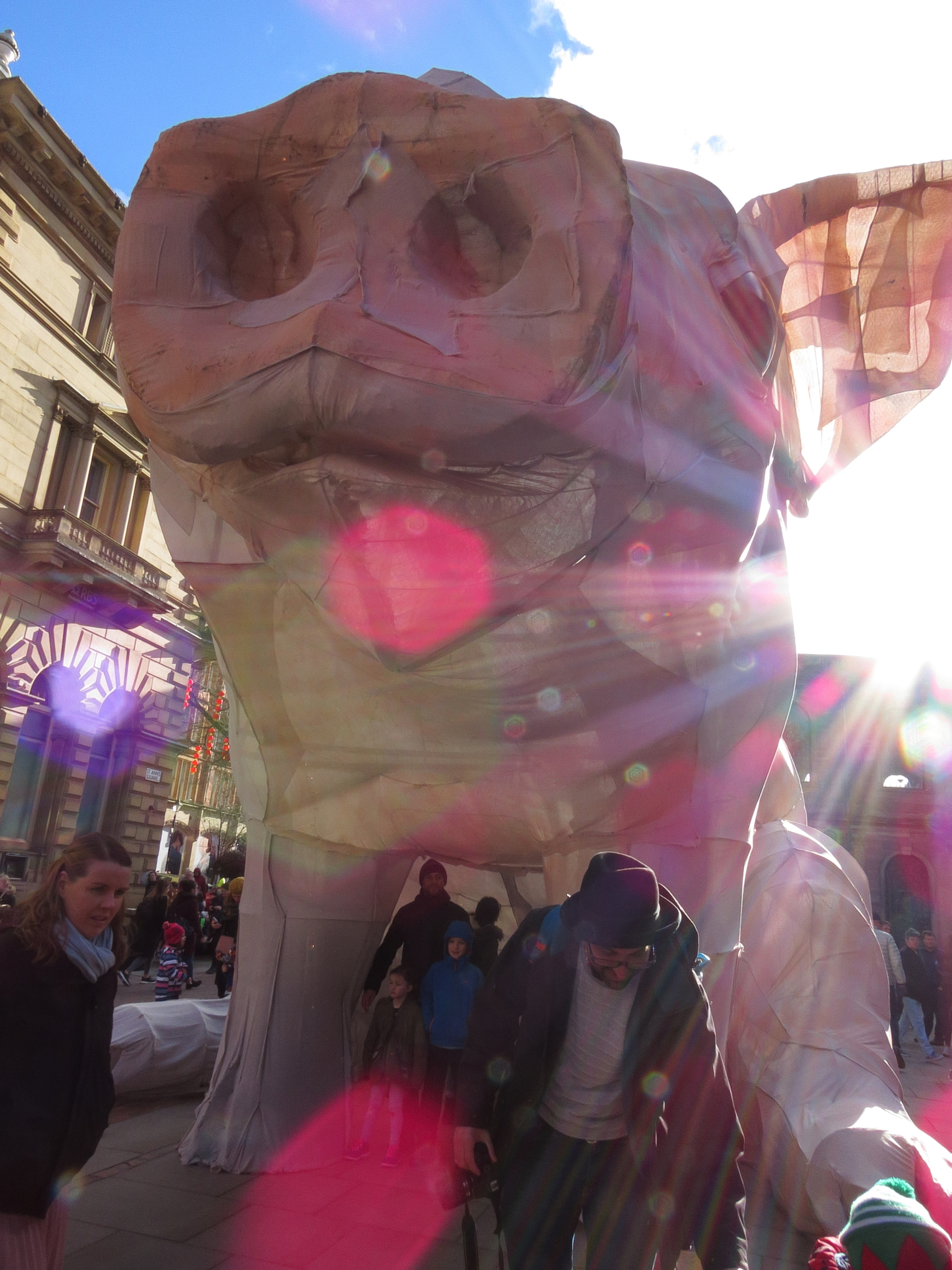 love lens flare turned pig ST A - afocks | ello
