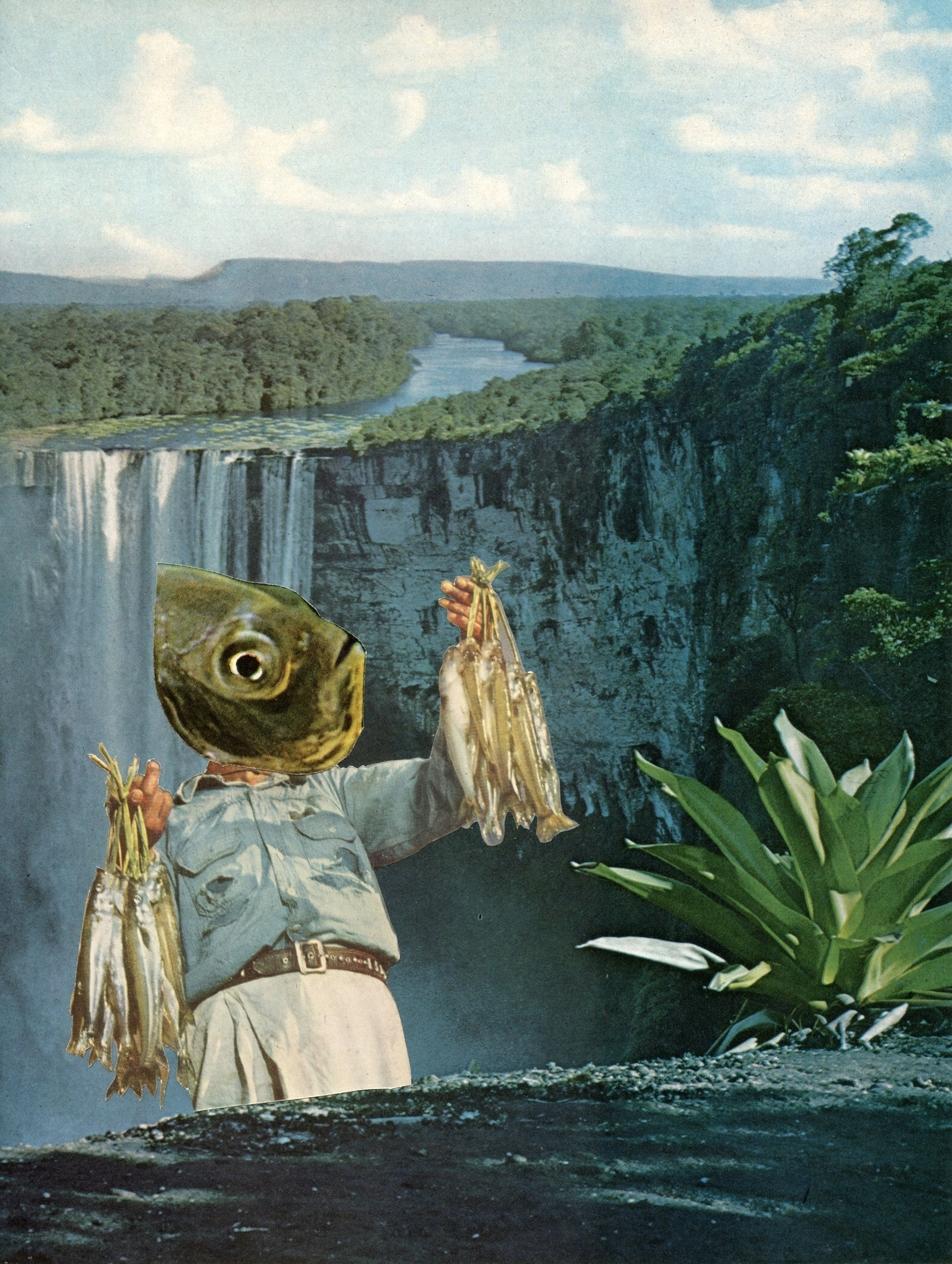 Collage Bep Broos - contemporarycollage#collageart#illustration#art#collage#collageartist#cutandpaste#analogcollage#analogcollageart#arte#collageoftheday#papercollage#surrealism#fish#fisherman#waterfall#ellocollage#elloart - bepbroos | ello